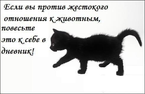 49471804_1web.jpg