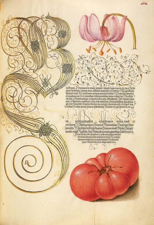 Mira-Calligraphiae-Monumenta_002.jpg