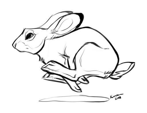Беги кролик беги! « Размышления. Философия « Стихи | AnimaCity.Ru