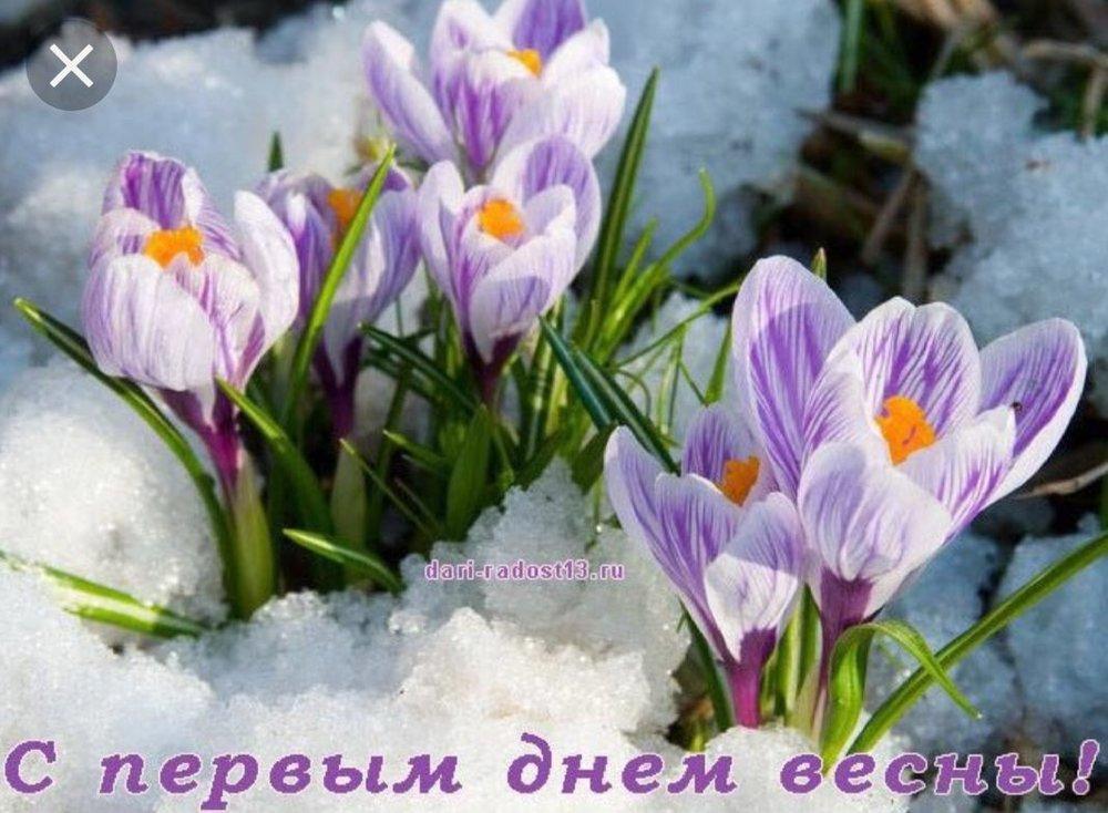 """Картинки по запросу """"первый день весны"""""""