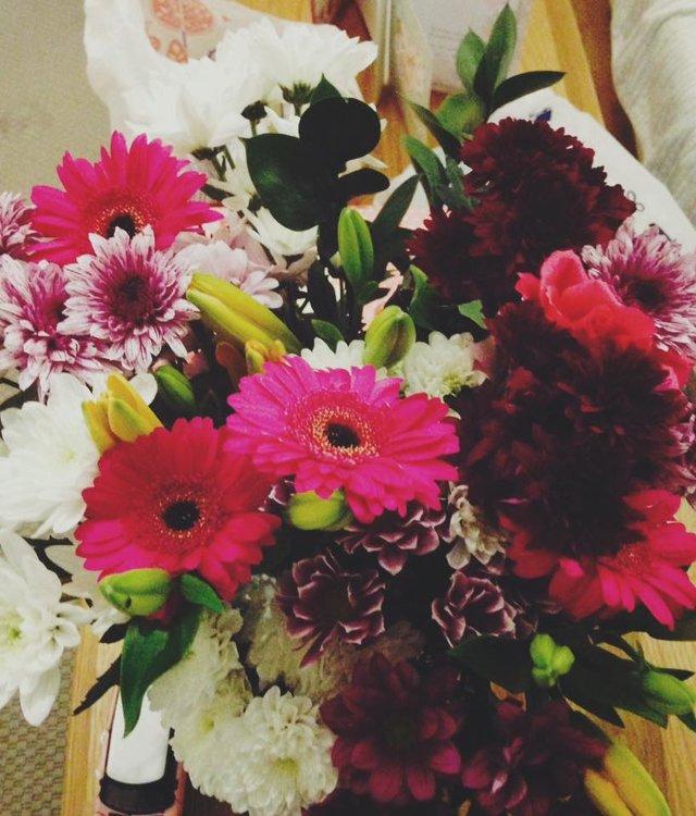 На изображении может находиться: цветок, растение и природа