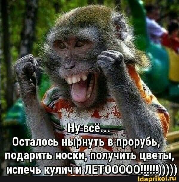 На изображении может находиться: текст «нувсё... осталось нырнуть в прорубь, подарить носки, получить цветы, испечь куличи летооо!о!!!!!!))))) летооооо! idaprikol.ru»