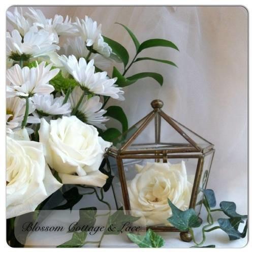 На изображении может находиться: цветок