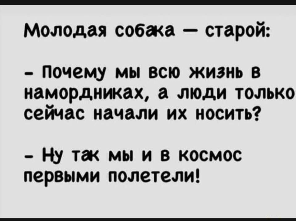 120552259_3750963554933465_494613709106281159_n.jpg?_nc_cat=108&ccb=2&_nc_sid=730e14&_nc_ohc=ubcMMoHnGdkAX-Z7Tvg&_nc_ht=scontent-arn2-2.xx&oh=9f30c87c45f5cf7a5575224d70867df0&oe=5FBAAD69