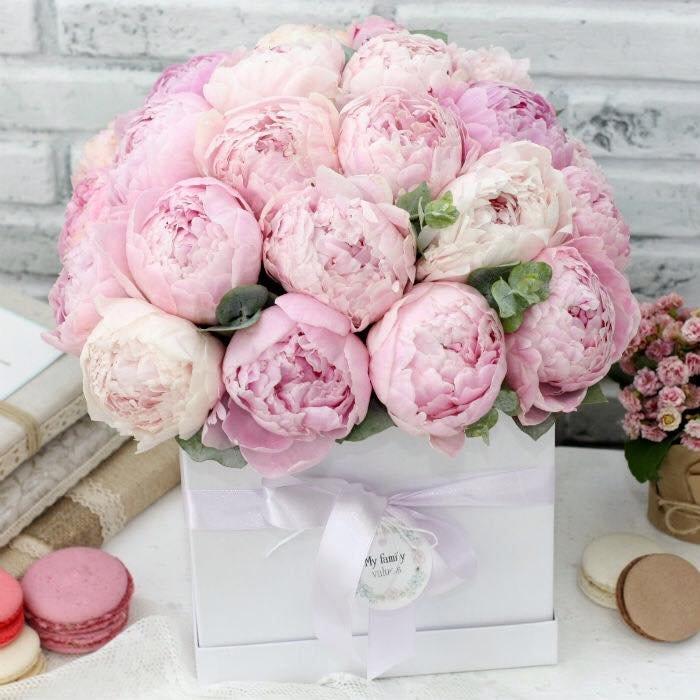 На данном изображении может находиться: цветок