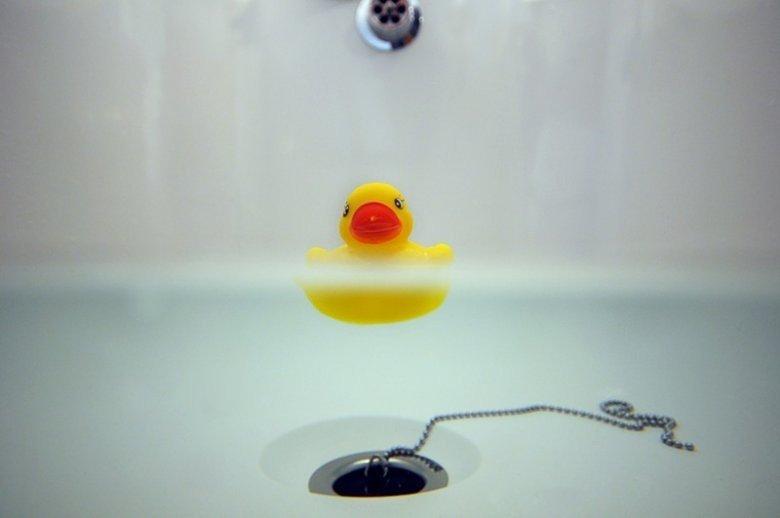 5 июня — День резиновых уточек в ванной | ВКонтакте