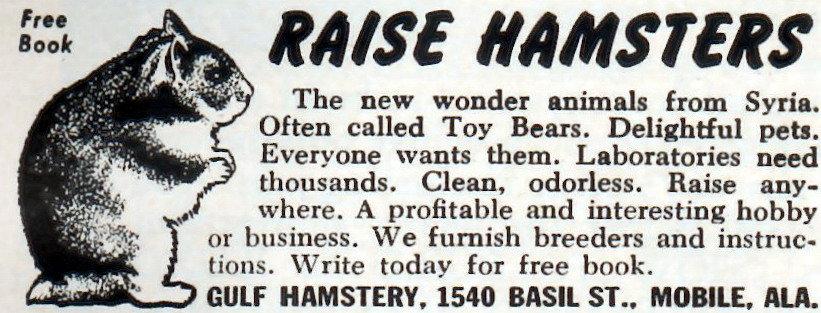 Raise_hamsters_advertisement.jpg