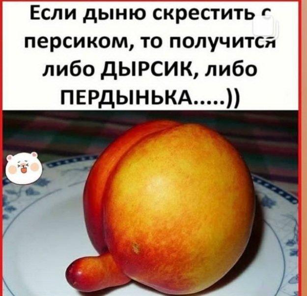 WhatsApp Image 2020-08-09 at 16.00.17.jpeg